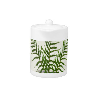 ikebana 18 by tony fernandes