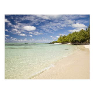 Ile Aux Cerf, most popular day trip for 2 Postcard