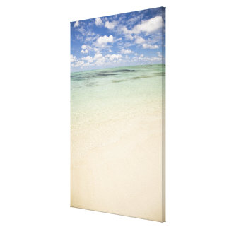 Ile Aux Cerf, most popular day trip for Canvas Print