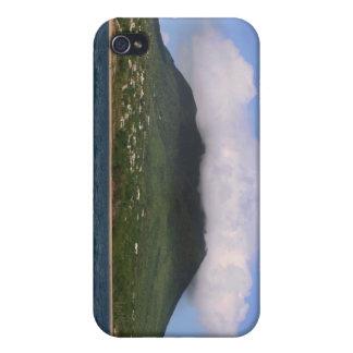 Île des Caraïbes Coque iPhone 4