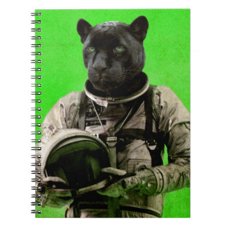 I'll taste the sky spiral notebook