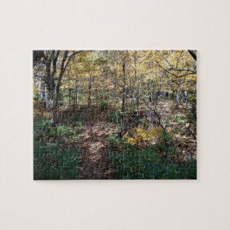 Illinois Nature Scene Puzzle