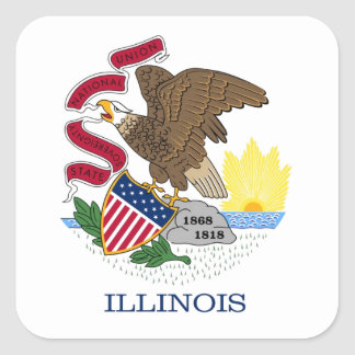 Illinois State Flag Square Stickers