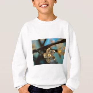 Illuminated Cherry Blossom Sweatshirt