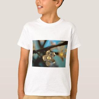 Illuminated Cherry Blossom T-Shirt