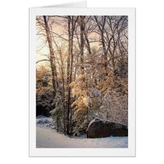 Illuminated Winter Card