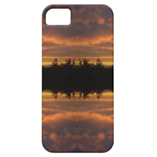 Illusion of Reflection iPhone 5 Cases