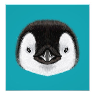 Illustrated portrait of Emperor penguin chick. Photo Print