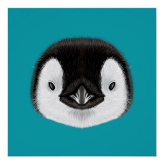 Illustrated portrait of Emperor penguin chick. Poster