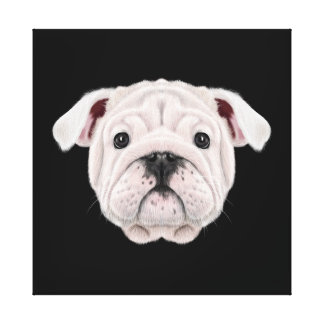 Illustrated portrait of English Bulldog puppy. Canvas Print