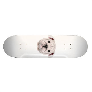 Illustrated portrait of English Bulldog puppy. Skateboard