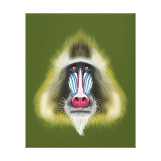 Illustrated portrait of Mandrill monkey. Canvas Print