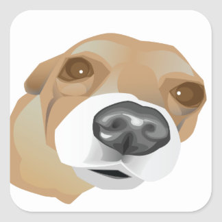 Illustrated vector portrait of a little dog square sticker