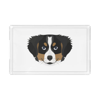 Illustration Bernese Mountain Dog Acrylic Tray