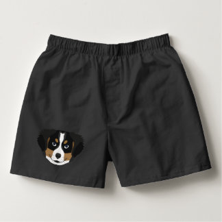 Illustration Bernese Mountain Dog Boxers