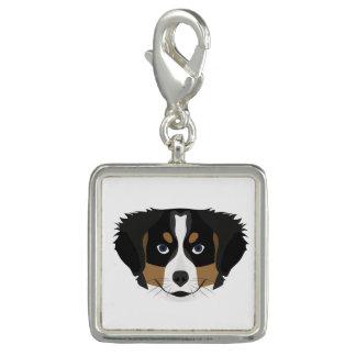 Illustration Bernese Mountain Dog Charm