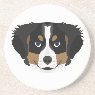 Illustration Bernese Mountain Dog Coaster