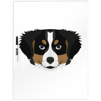 Illustration Bernese Mountain Dog Dry Erase Board