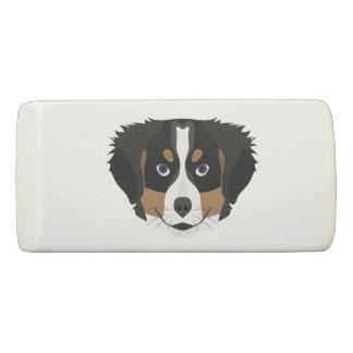 Illustration Bernese Mountain Dog Eraser