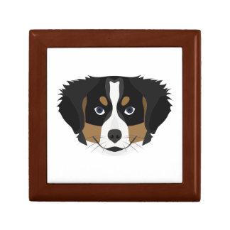 Illustration Bernese Mountain Dog Gift Box