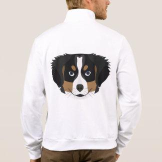 Illustration Bernese Mountain Dog Jacket