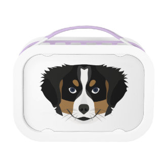 Illustration Bernese Mountain Dog Lunch Box