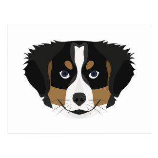Illustration Bernese Mountain Dog Postcard