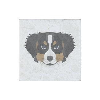 Illustration Bernese Mountain Dog Stone Magnets