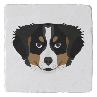 Illustration Bernese Mountain Dog Trivet
