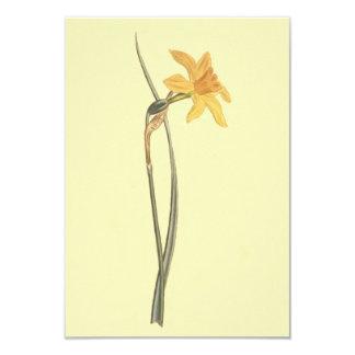 Illustration de fleur de jaune de jonquille de carton d'invitation 8,89 cm x 12,70 cm