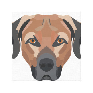 Illustration Dog Brown Labrador Canvas Print