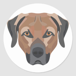 Illustration Dog Brown Labrador Classic Round Sticker