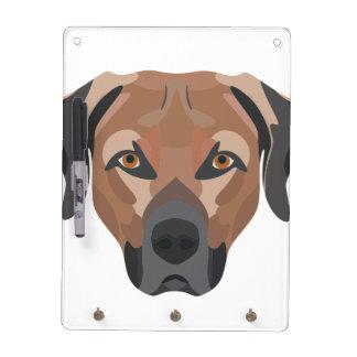 Illustration Dog Brown Labrador Dry Erase Board