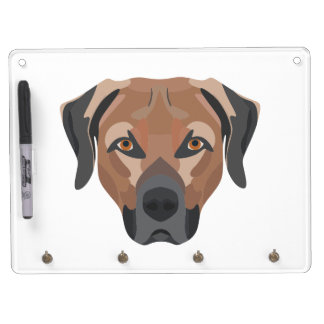 Illustration Dog Brown Labrador Dry Erase Board With Keychain Holder