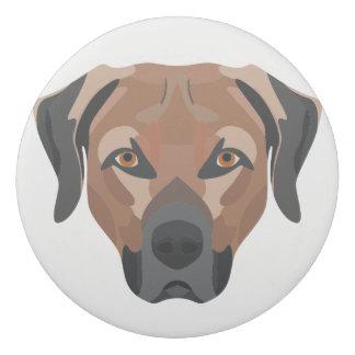 Illustration Dog Brown Labrador Eraser