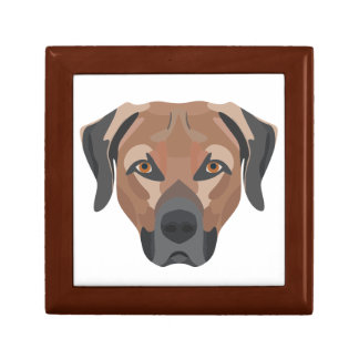 Illustration Dog Brown Labrador Gift Box
