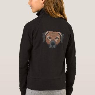 Illustration Dog Brown Labrador Jacket