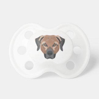 Illustration Dog Brown Labrador Pacifier