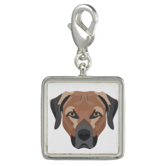 Illustration Dog Brown Labrador Photo Charm