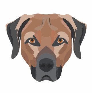 Illustration Dog Brown Labrador Photo Sculpture Button