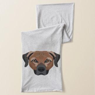 Illustration Dog Brown Labrador Scarf