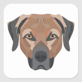 Illustration Dog Brown Labrador Square Sticker