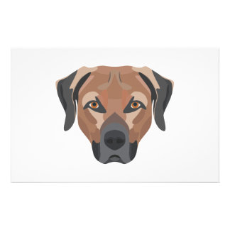Illustration Dog Brown Labrador Stationery
