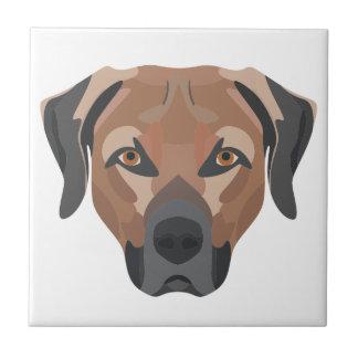 Illustration Dog Brown Labrador Tile