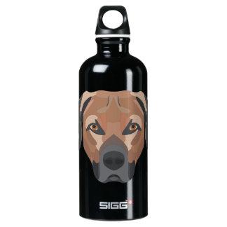 Illustration Dog Brown Labrador Water Bottle