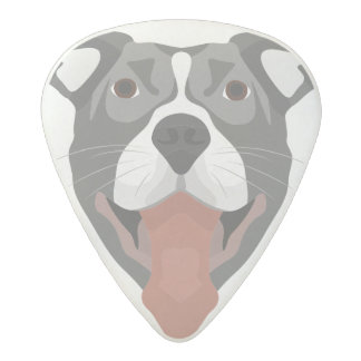 Illustration Dog Smiling Pitbull Acetal Guitar Pick