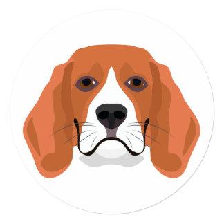 Illustration dogs face Beagle Card
