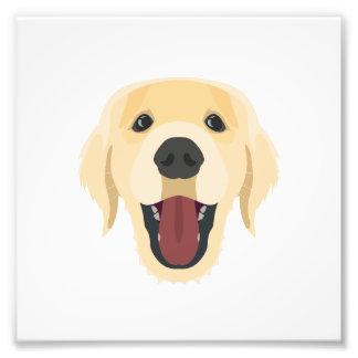 Illustration dogs face Golden Retriver Photo Print