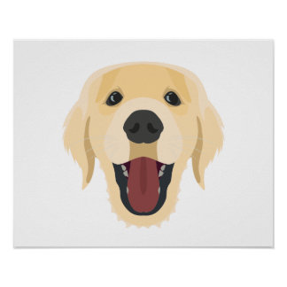 Illustration dogs face Golden Retriver Poster
