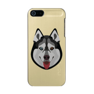 Illustration dogs face Siberian Husky Incipio Feather® Shine iPhone 5 Case